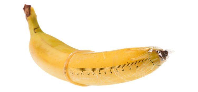 qual o tamanho pênis considerado normal
